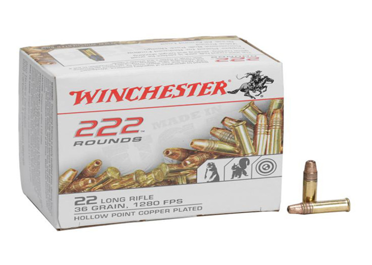 What Are The Most Powerful 22lr Ammunition  - Outdoor Limited