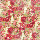 Devotion - Floral Cream 1/2 Metre Length