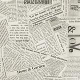Wonder 108 newspaper quilt back by Carrie Bloomston  - per half metre length