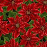 Christmas Holiday Poinsettia - per half meter length