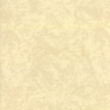 Flax Piecrust   Flea Market mix by Cathe Holden   per 1/2 metre