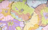 PASTEL Lotus Leaf Kaffe Classics  1/2 Metre Length