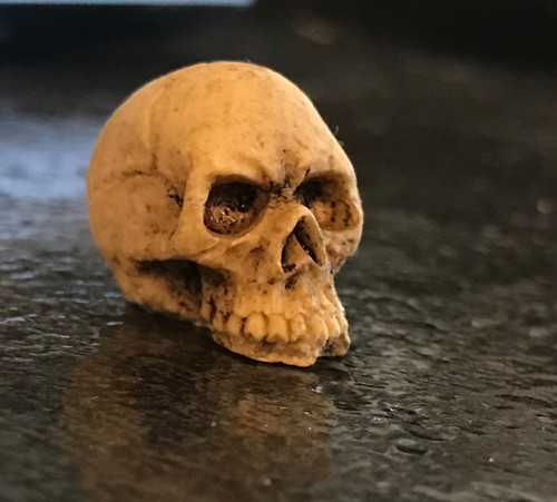 1/12 Scale Miniature Skull