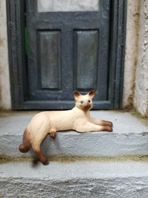 Siamese Cat with Dangling Leg