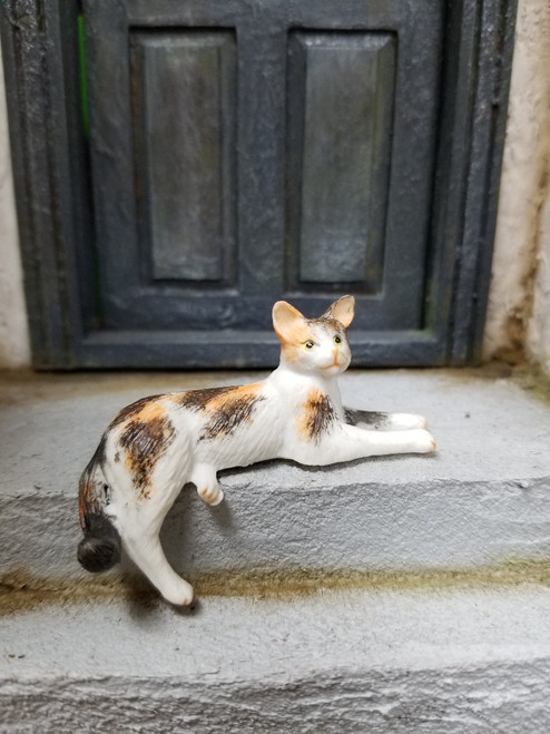 Calico Cat with Dangling Leg