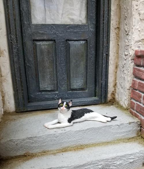 Sprawled Black & White Miniature Cat