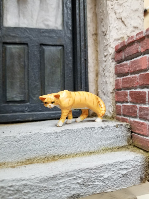 Stalking Orange and White Miniature Cat