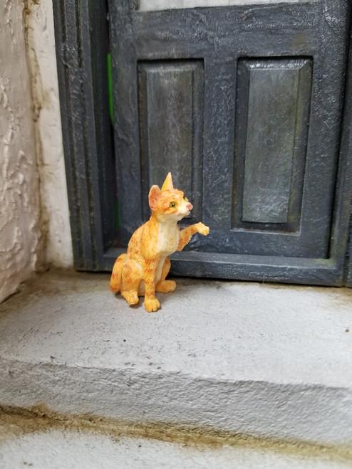 Knocking Orange Miniature Cat
