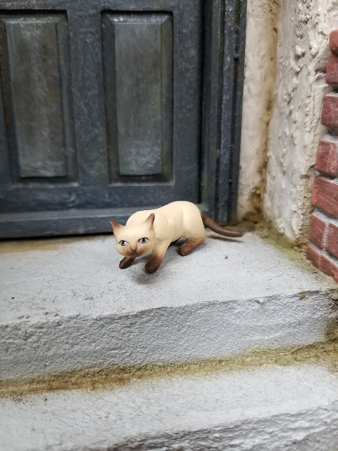 Sneaking Siamese Miniature Cat