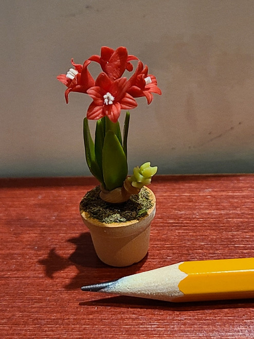 1/12 Scale Potted Amaryllis - Red