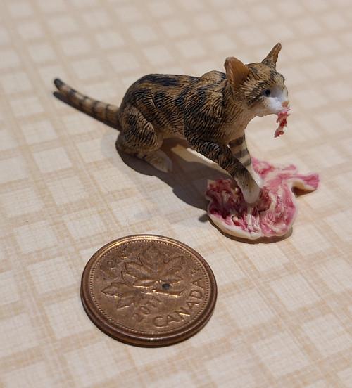 1/12 Scale Cat Eating Steak