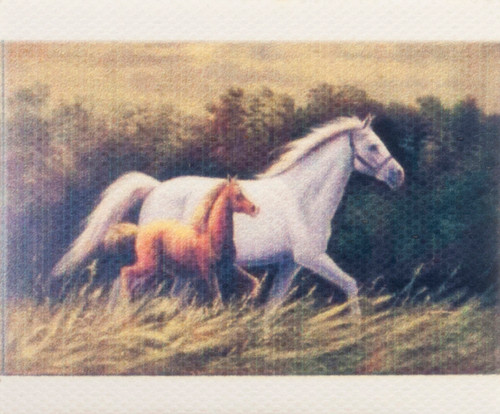 Unframed Horse Painting
