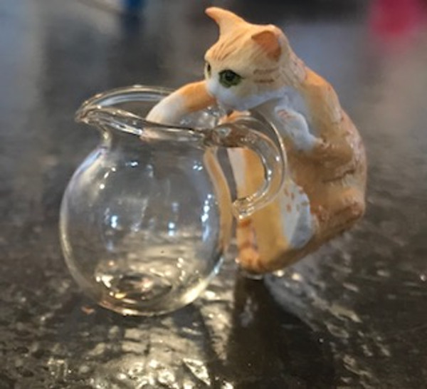 Orange Cat with White Paws - Reaching In