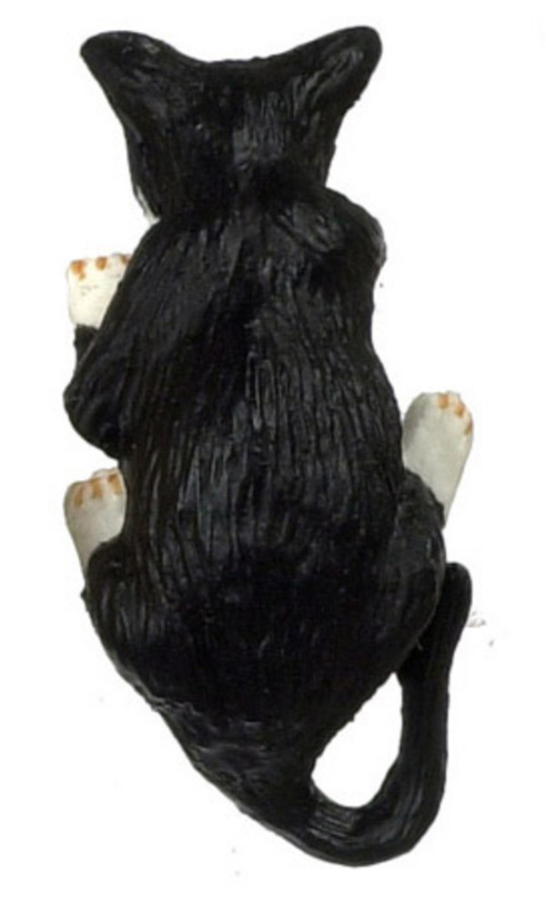 Black Cat with White Paws - Reaching In