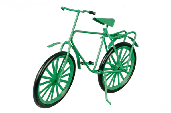 Adult Bicycle - Green