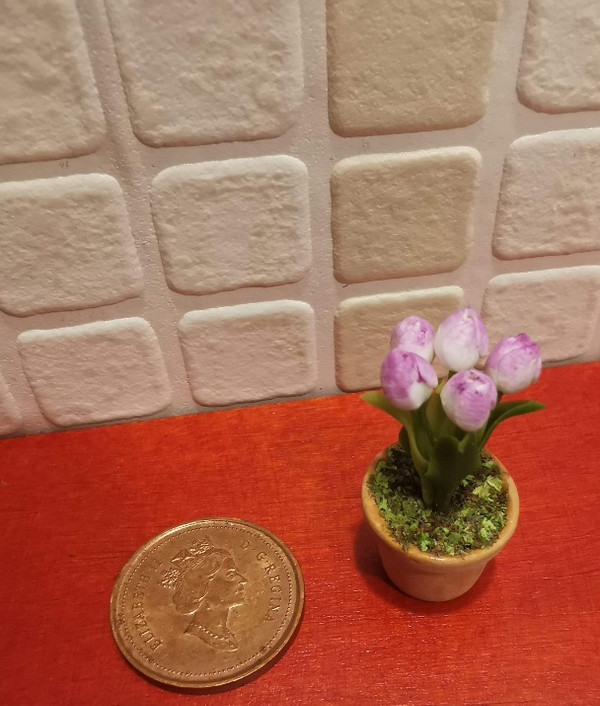 Potted Tulip - White & Mauve