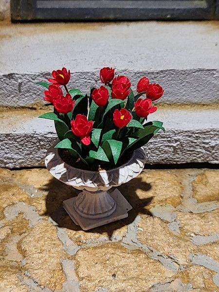 Miniature Red Tulips in Planter