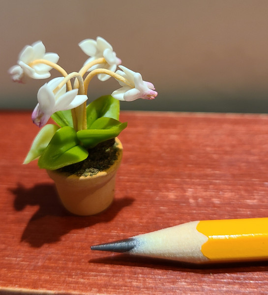 1/12 Scale White Cyclamen Plant