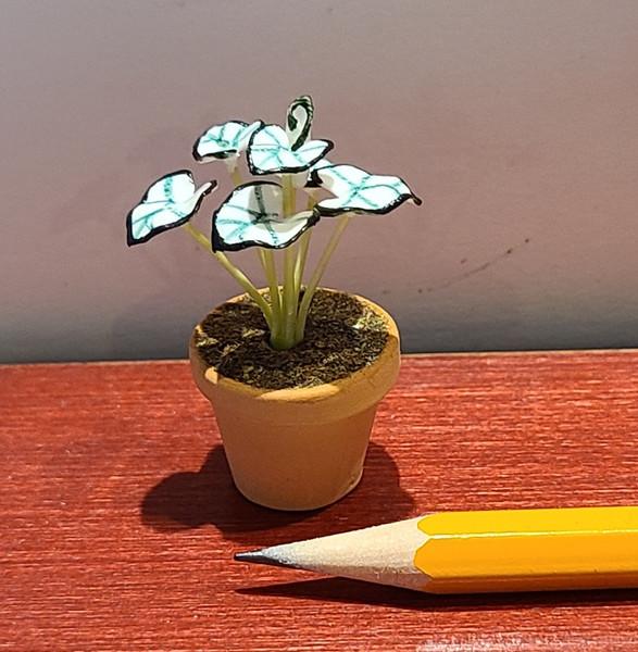1/12 Scale White & Green Leafy Plant -(n5)