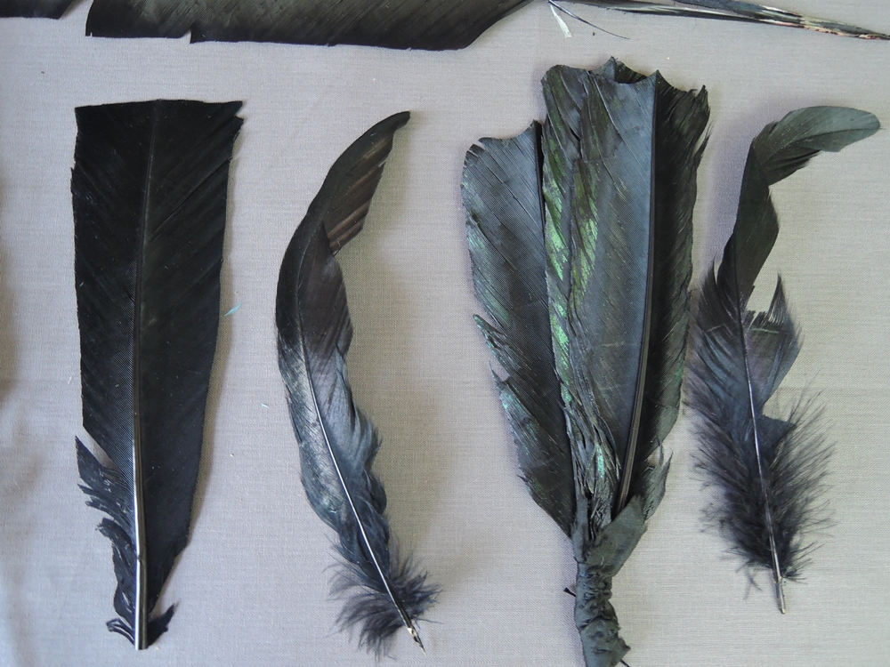 6  Large Vintage Millinery Hat Feathers, 8 to 12 inches long, Antique 1800s 1900s
