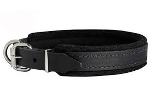 Felt Padded Leather Dog Collar