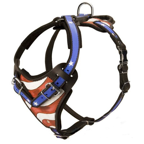American Leather K9 Harness