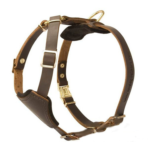Leather K9 Harness for Puppies & Small Breeds