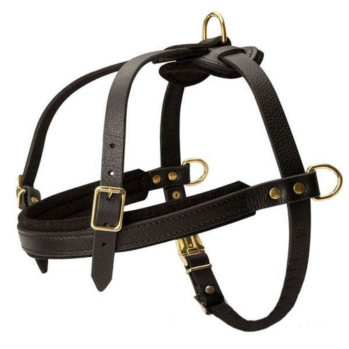 Haul & Pull Leather Dog Harness