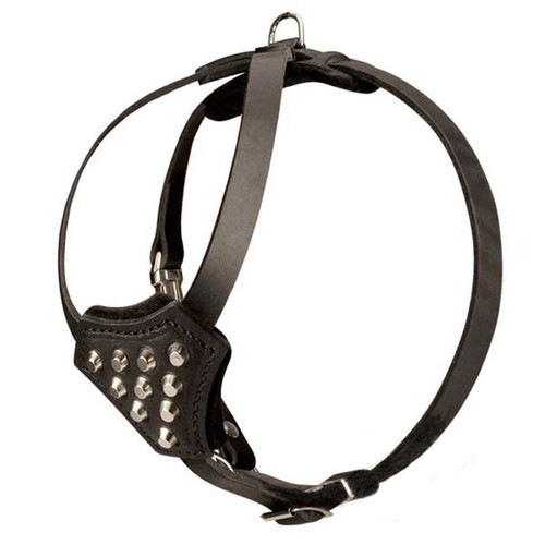 Studded Leather Puppy Harness