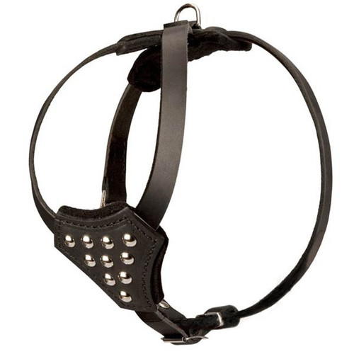 Leather Button Puppy Harness