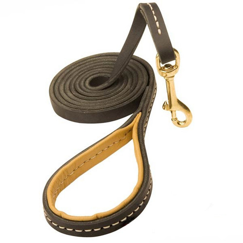 Chic Leather K9 Leash