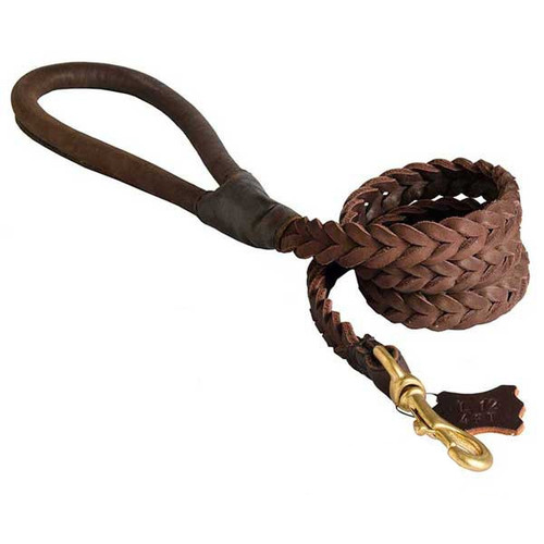 Braided Leather Leash with Handle