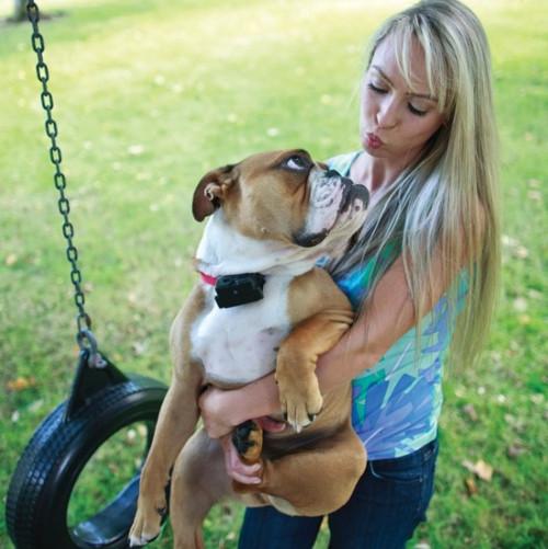 PRF-275-19 Extra Receiver Stubborn Dog Collar