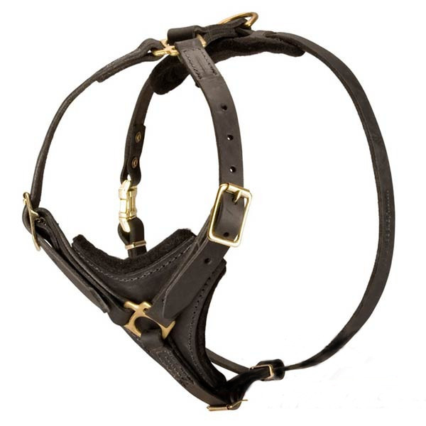 Premium Leather Dog Harness