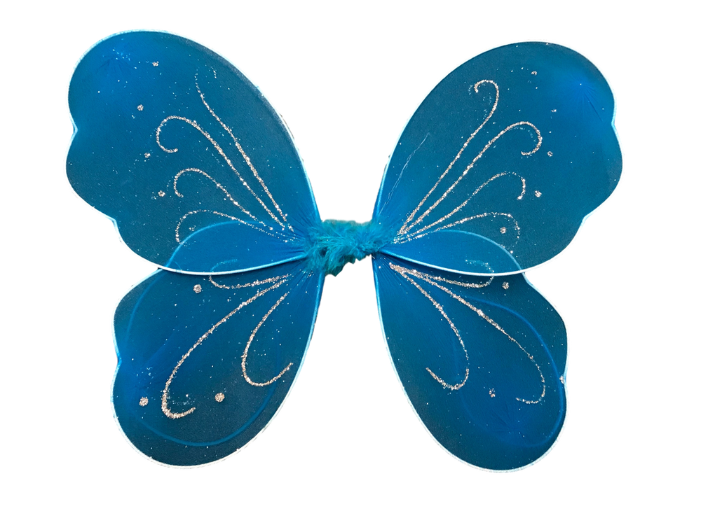 Turquoise Wing