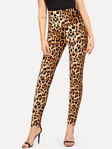 Leopard Print High Waist Leggings