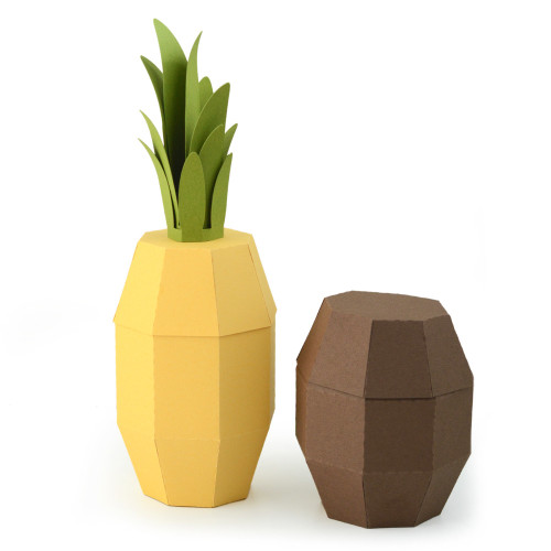 Pineapple and Coconut Box