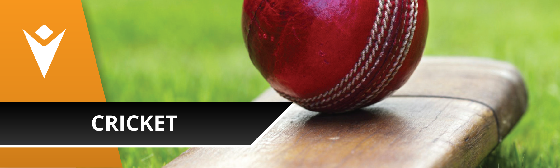 cricket-banner.png