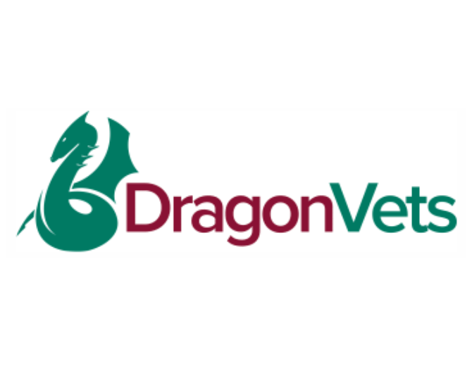 dragon-vets.png