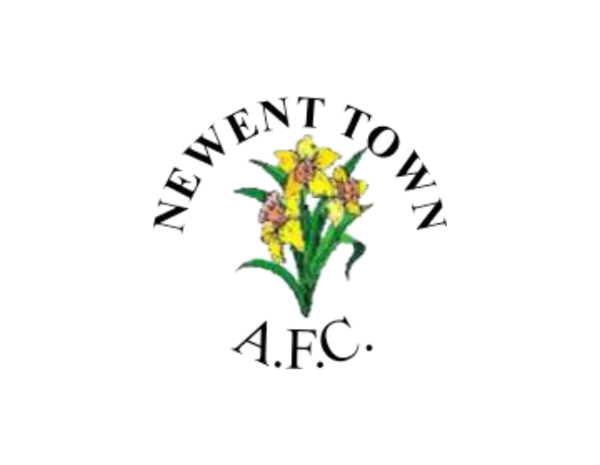 newent-town-club-badge.png