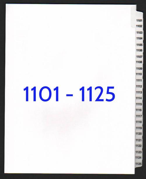 exhibitindexes.com V-SNS-1101-1125 dividers