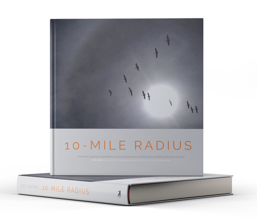 10-Mile Radius: Reframing Life on the Path Through Cancer by Cat Gwynn