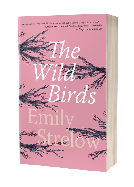 The Wild Birds by Emily Strelow