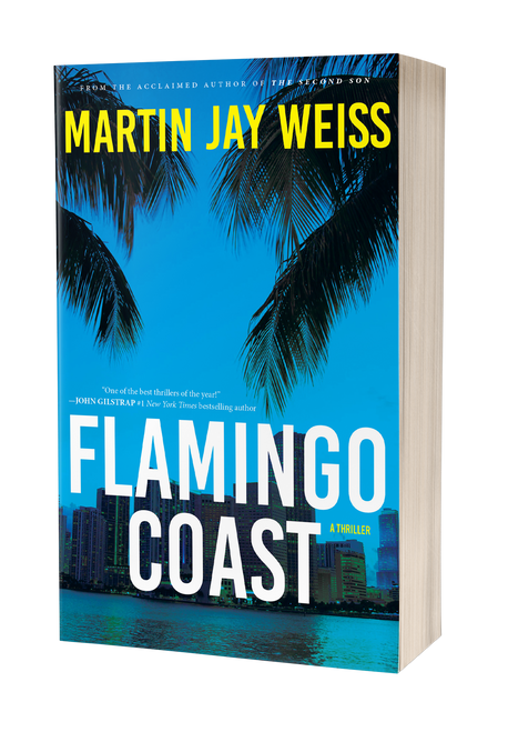 Flamingo Coast by Martin Jay Weiss