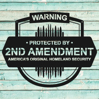 2nd Amendment Sign The Original Homeland Security (F34)