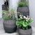 Jeva Planter Installation by Melissa Gerstle Design