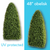 Boxwood Topiary for the Outdoors