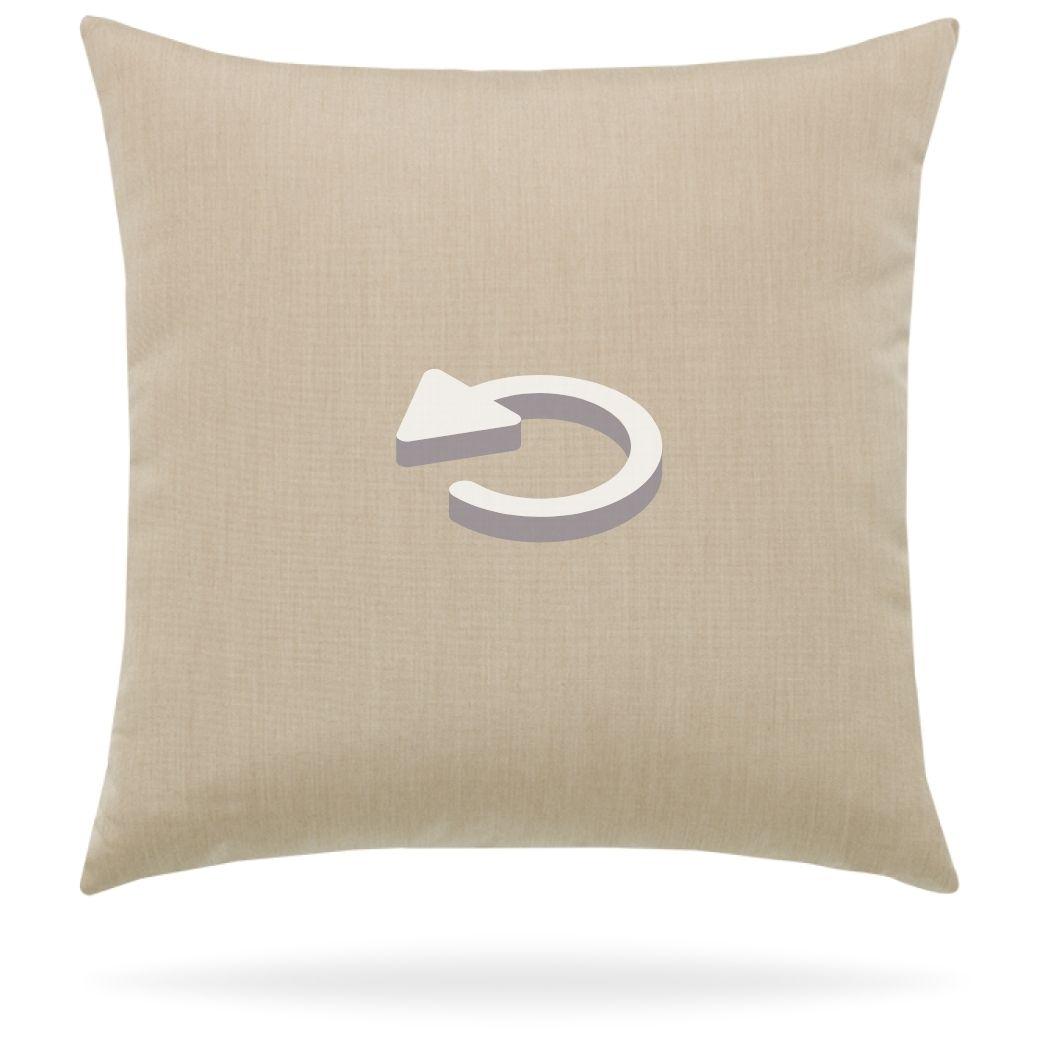 18z1-reverse earth pillow