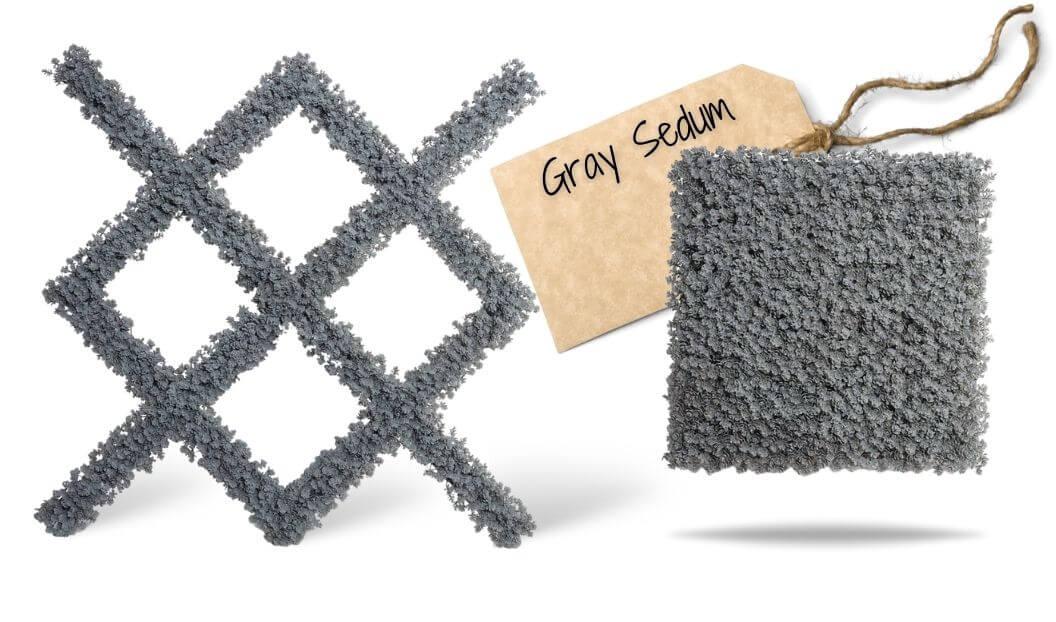 2-enduraleaf-gray-sedum