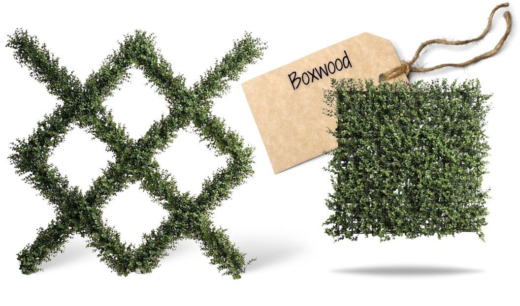 boxwood-trellis enduraleaf